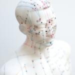 Akupunkturpuppe, auf der Energie-Leitbahnen (Meridiane) eingezeichnet sind