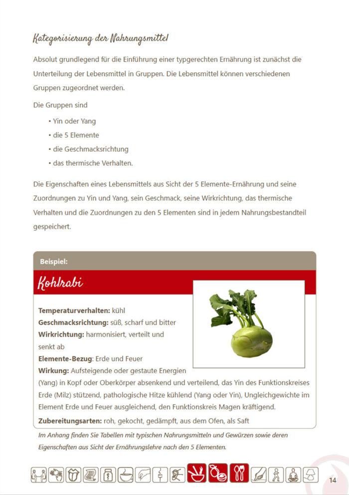 eBook Ernährungstipps und Rezepte für das Element Feuer